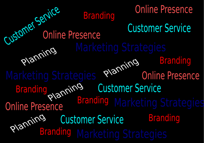 Things that you must have in your business in 2019: An online presence, Good customer service, Branding, Marketing and a plan.